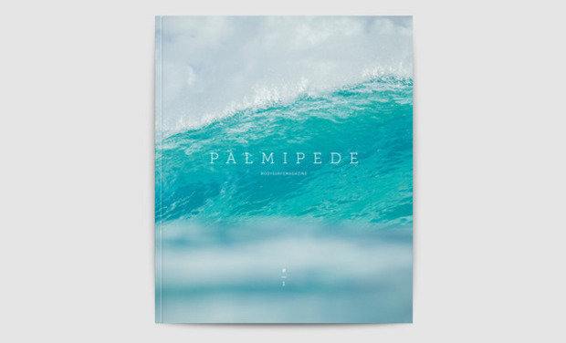 Palmipède bodysurf magazine surf